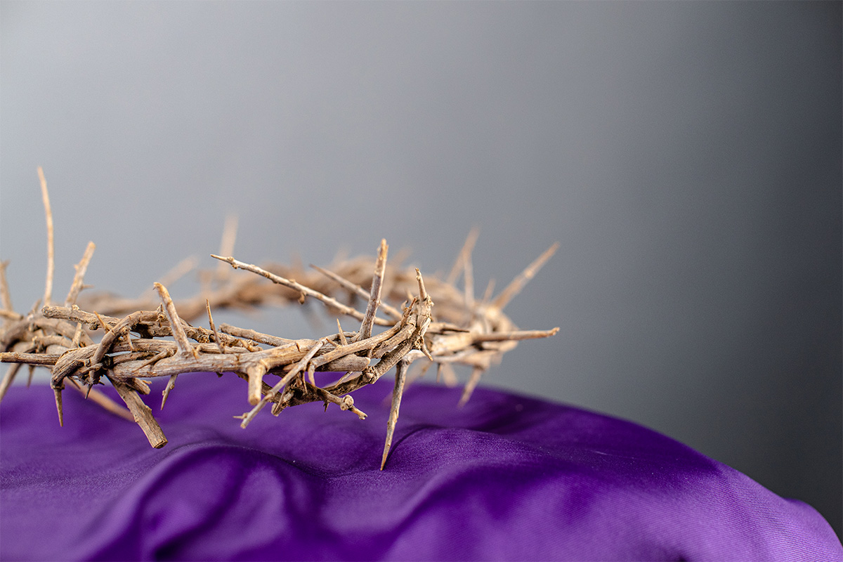 A crown of thorns on purple cloth with a white background